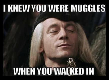harry-potter-meme