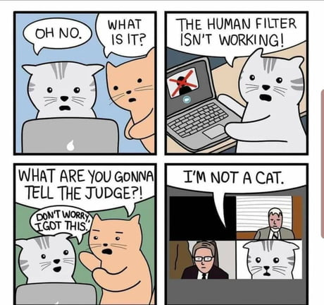 nu-sunt-o-pisica-internet