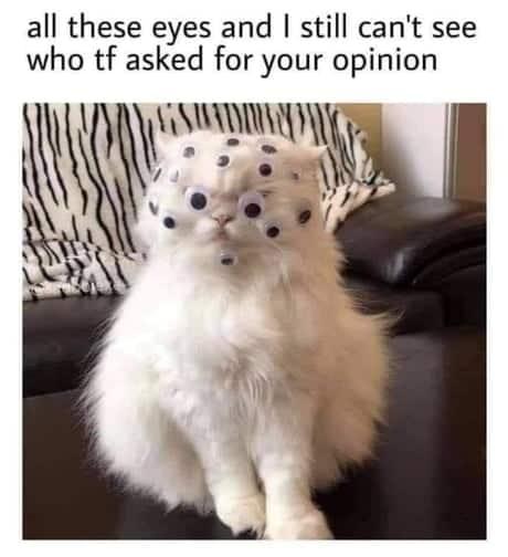 opinia-ta-nu-conteaza